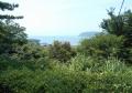 庭から見る海の景色