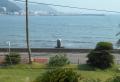 海中に石碑が建っているのが見える