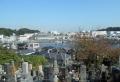 正観寺から見る深浦湾
