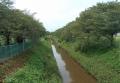 花影橋から見る砂川堀