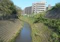 昨日の砂川堀用水路