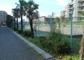 砂川堀用水路の調整池