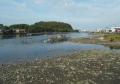 3年前の平潟湾河口