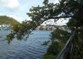 夕照橋付近から見る野島漁村
