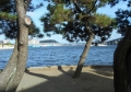 枇杷島から見る平潟湾の景色