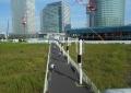 すずかけ通り歩道橋から見る空き地