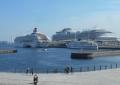 像の鼻テラスから見た豪華客船