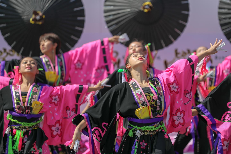 DCreikaG2018tokorozawa02-8.jpg