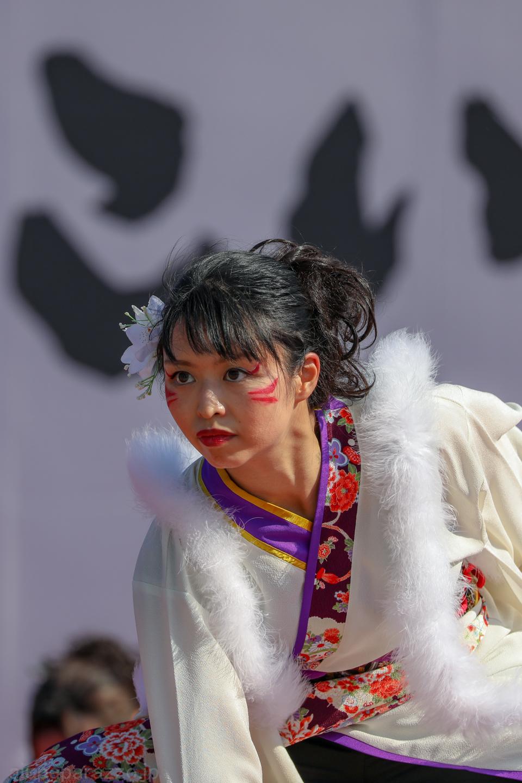 hyaku2018hikari-17.jpg