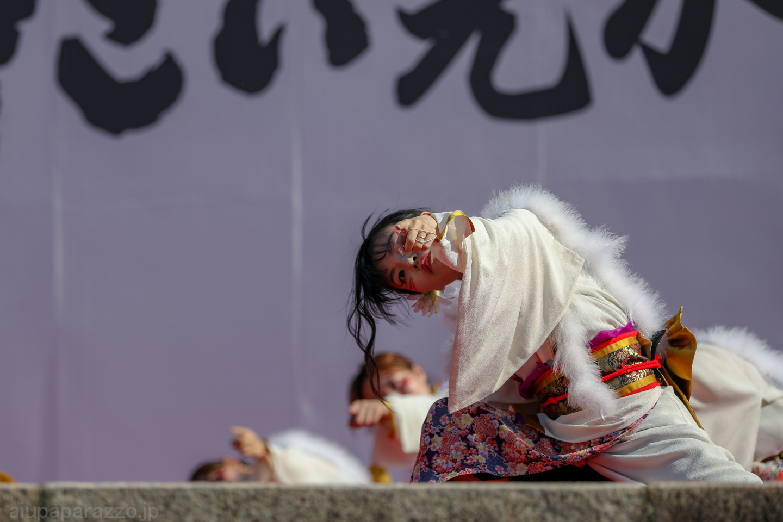hyaku2018hikari-19.jpg