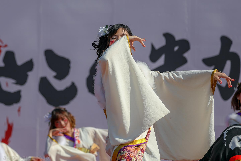 hyaku2018hikari-28.jpg