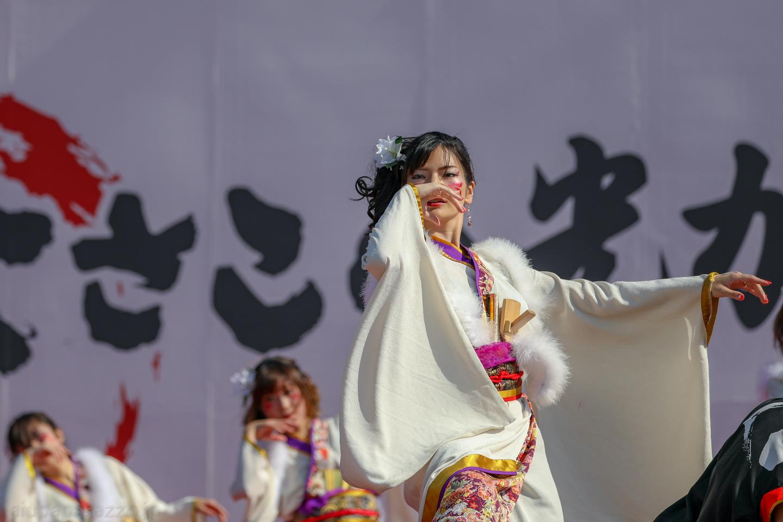hyaku2018hikari-30.jpg