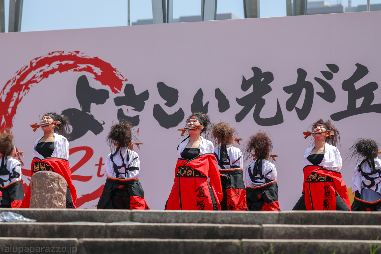 kabuto2018hikari03-18.jpg