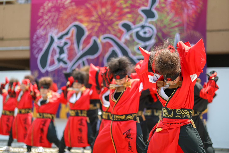 kabuto2018saikasaikanpachi-14.jpg