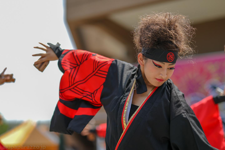 kabuto2018saikasaikanpachi-5.jpg