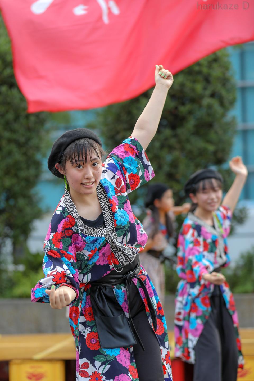 spk2018sakaecho03-6.jpg