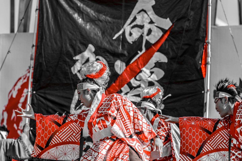 tmiyabi2018hikari-24.jpg