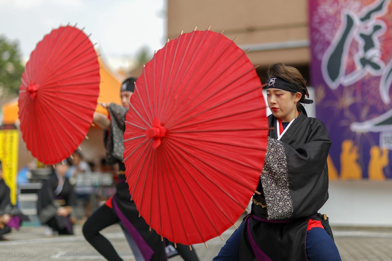 waraku2018saikasaikanpachi02-2.jpg