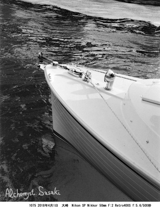 船と桜と1075-12