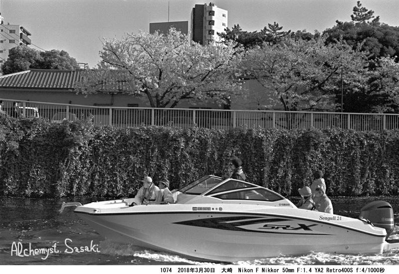 船と桜と1074-33