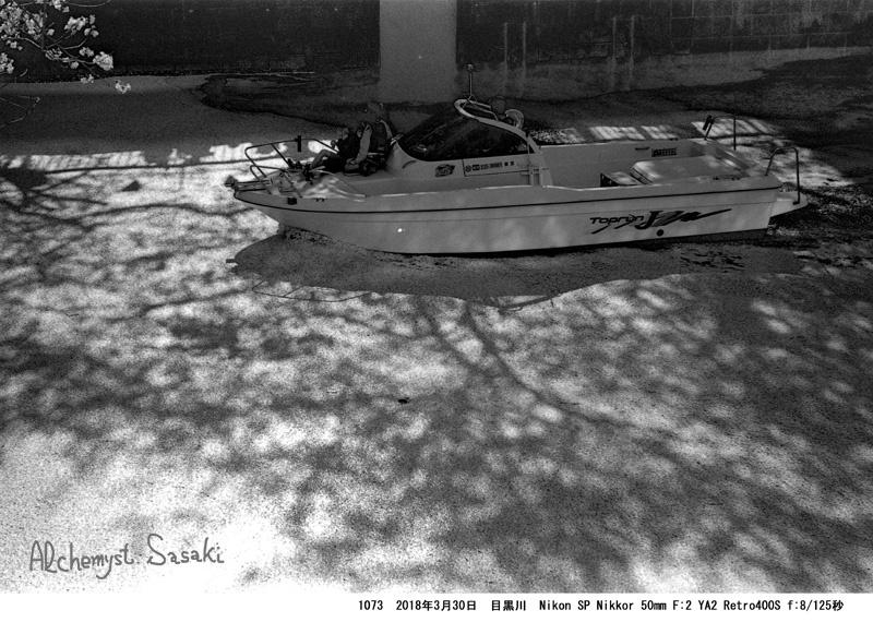 船と桜と1073-28