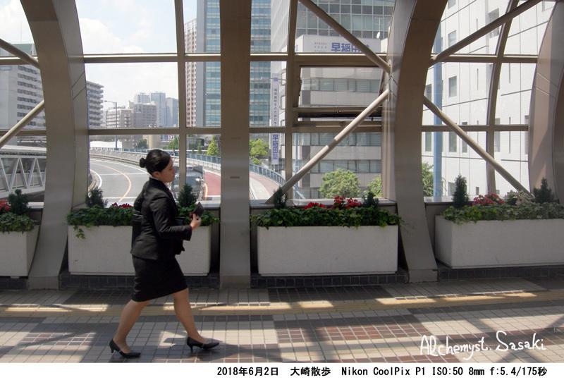 大崎散歩DSCN3143
