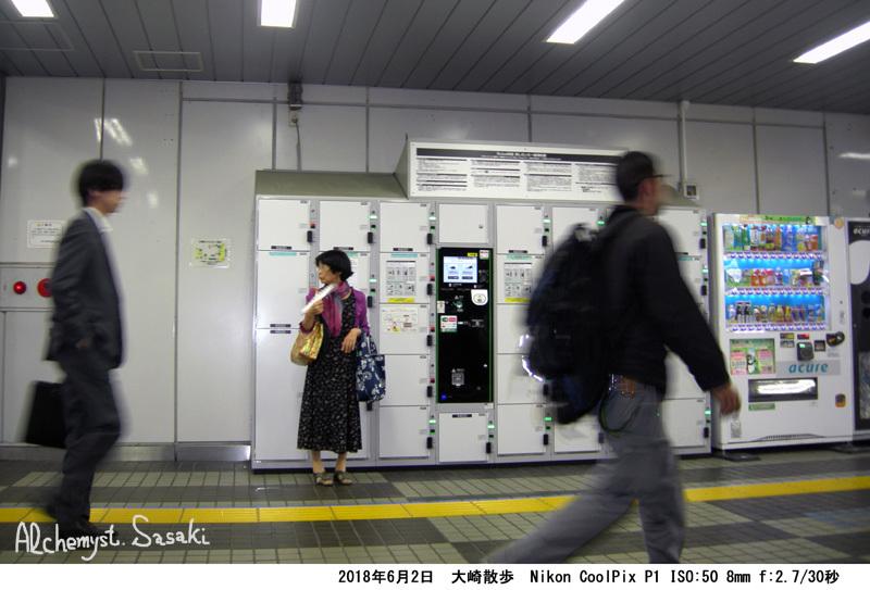大崎散歩DSCN3149
