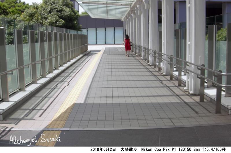 大崎散歩DSCN3233