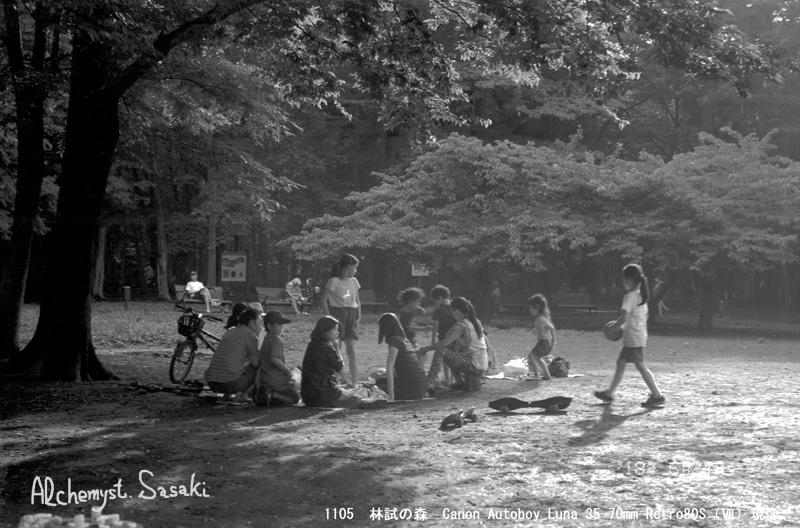 林試の森1105-20