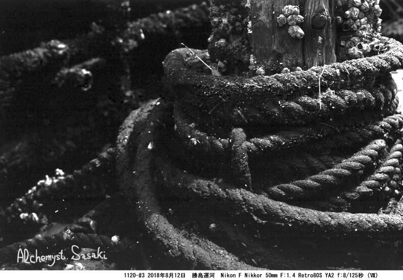 ロープ1120-#3-19