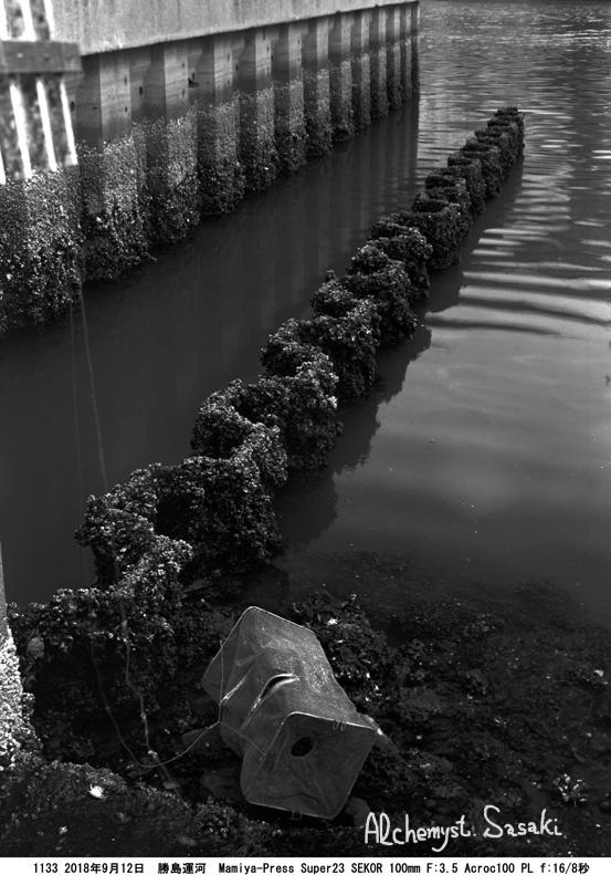 勝島運河1133-1 Aホルダー 二段現像