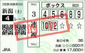 新潟4_9
