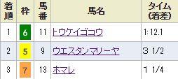 nigata2_513.jpg