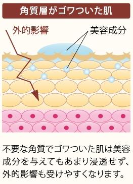 角質層がゴワついた肌