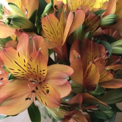 180407花
