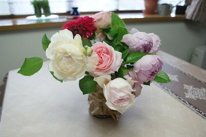 180502薔薇