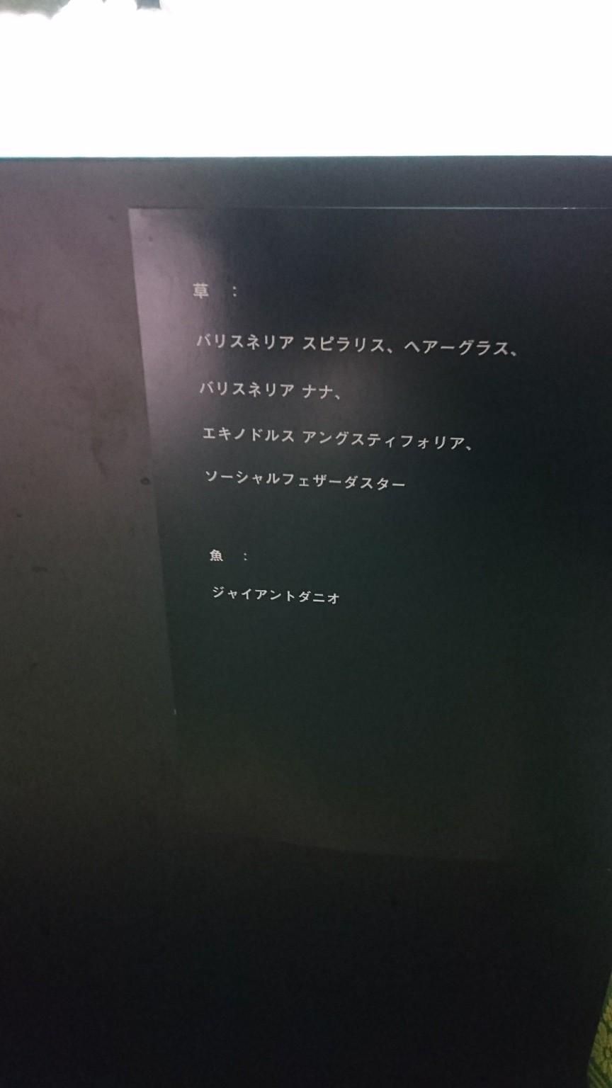 20180731194725246.jpg
