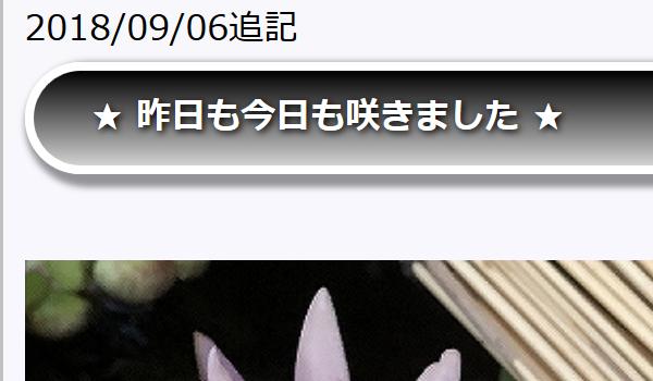 090600.jpg