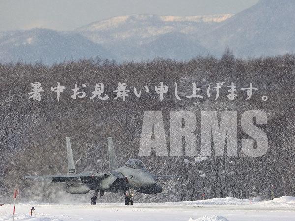 雪の中のF15イーグル