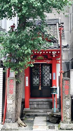 DSC_佐竹7029_01