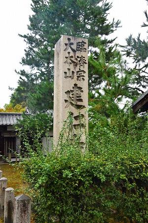 DSC_祇園7169_01