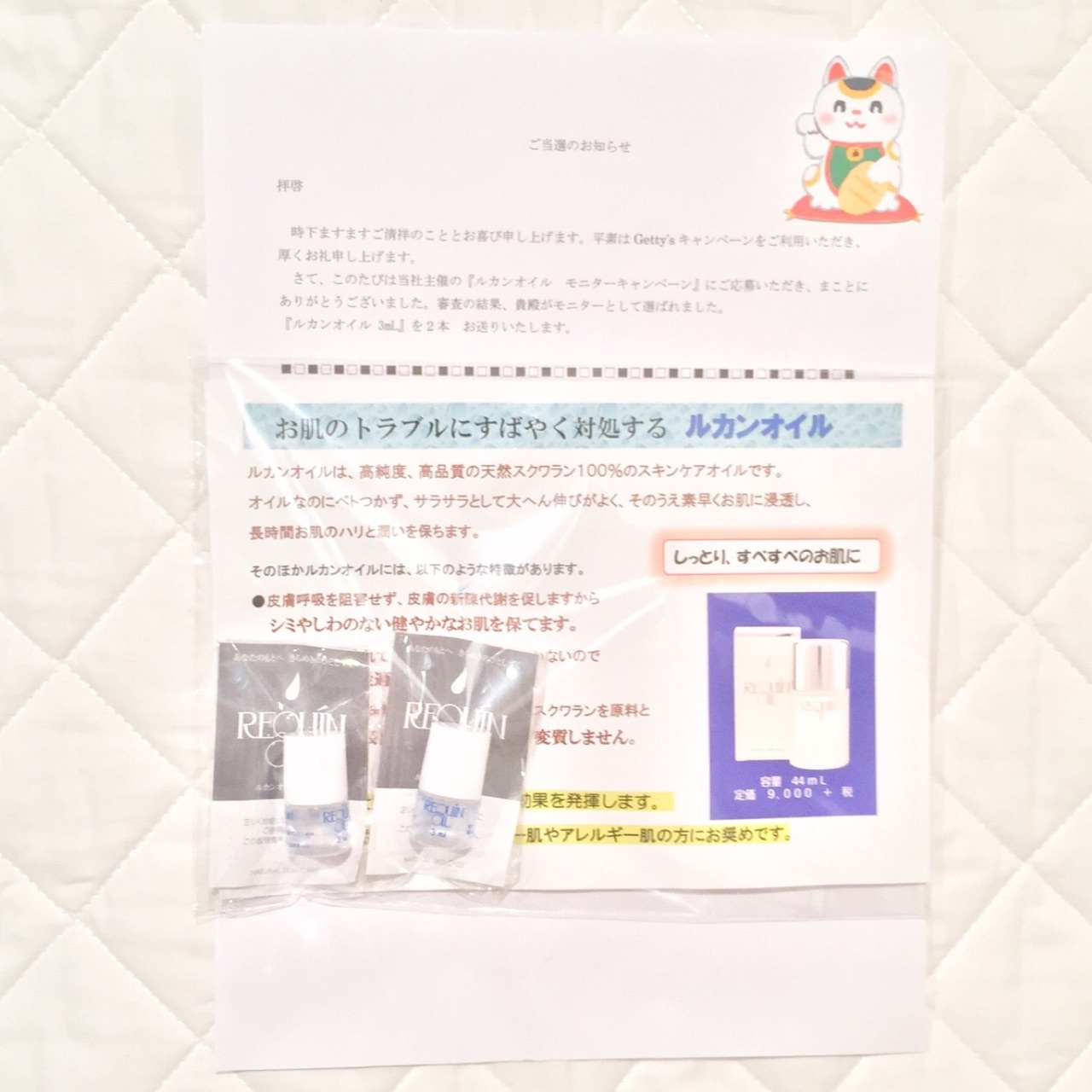 IMG_4146-2.jpg