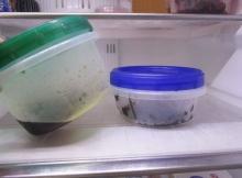 冷蔵庫 断捨離チェックリストr (3)