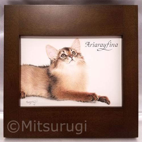 絵 イラスト ポートレート 肖像画 猫 ソマリ 2L