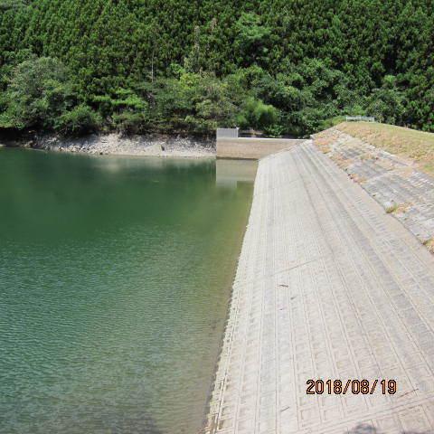 ため池の水