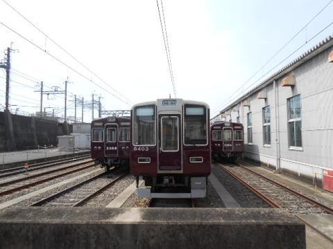 hk-katsura120.jpg