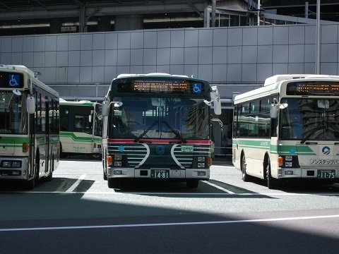 os-zebrabus-3.jpg