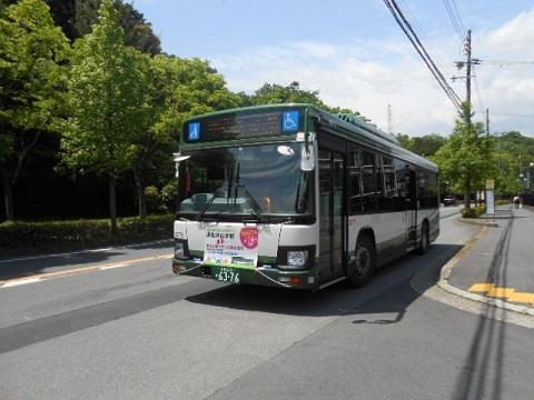 oth-bus-29.jpg