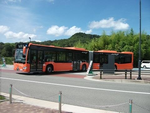oth-bus-58.jpg