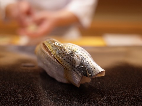 maysugita23.jpg